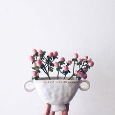 Tara Burke / @taracarbonara ceramics