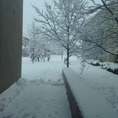 @Emily Cantrell   I've got my own little winter wonderland!!! #snowday #vfcc #vfccseasons @Valley Forge Christian College