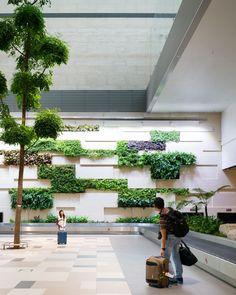 Cladding Design, Facade Design, Wall Design, Backyard Walkway, Backyard Garden Design, Green Architecture, Sustainable Architecture, Vertikal Garden, Green Facade