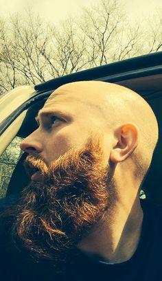A redditor's epic beard.