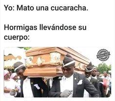 Solo tengo Yaoi :'v ya vali madres Funny Spanish Memes, Spanish Humor, Wtf Funny, Funny Memes, Mexican Memes, Drama Memes, Comedy Central, Meme Faces, Best Memes