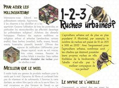 Dépliant critique sur les ruches urbaines