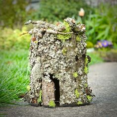 The Trouble with Fairies in the Miniature Garden If you've followed me long enough you will know that I'm more in-tune with miniature gardening than fairy gardening. But fairies are som…