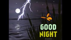 good night wishes for him sweet dreams \ good night wishes for him ` good night wishes for him romantic ` good night wishes for him sweet dreams ` good night wishes for him quotes ` good night wishes for him text ` good night wishes for him beautiful Sweet Good Night Images, Good Night Funny, Good Night Love Messages, Good Night Love Quotes, Good Night Prayer, Good Night Friends, Good Night Blessings, Good Night Greetings, Good Night Gif