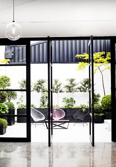 Contemporary courtyard at Mildred & Co, Auckland | contemporary courtyard - black steel windows - room with a view - indoor outdoor flow - chairs outdoor furniture - tree silhoutte - black pots planters - topiary buxus boxwood balls