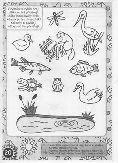 Pond Life, Presents, River, Blog, Frogs, Gifts, Blogging, Favors, Gift