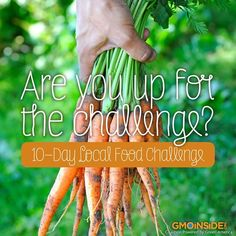 If we are to create a nutritious, healthy, non-GMO, fair-trade food supply, this is a first-hand way to experience what we may one day achieve. Learn more about the 10-day local food challenge here: http://gmoinside.org/10-day-local-food-challenge #localvore #food #nonGMO #contamination #organic #sustainability #cleaneats