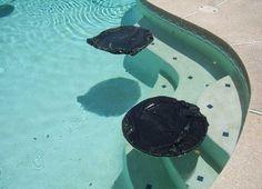 zwembad-warm-maken-tips3