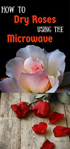 Awesome diy flowers hacks are available on our internet site. look at th s and you will not be sorry you did. Pressed Roses, Pressed Flower Art, Flower Crafts, Diy Flowers, Paper Flowers, Flower Diy, Resin Crafts, Fun Crafts, Drying Roses