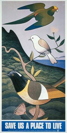 """Save us a place to live"", Don Binney, Produced for the New Zealand National Conservation Week Campaign Committee, with assistance from the L. Nathan Group of Companies. Art Maori, New Zealand Art, Nz Art, Nature Posters, Art Archive, Bird Art, Art Images, Conservation, Wildlife"