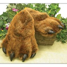 Bear Paw Slippers #ridiculous