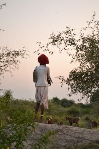 Camping with leoprads in Rajasthan at bagheera's camp Godwad