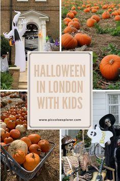 Halloween in London with Kids 2021 - Piccolo Explorer Days Out In London, London With Kids, Halloween Activities, Family Activities, Halloween London, Peppa Pig World, Legoland Windsor, Leeds Castle, Pumpkin Picking