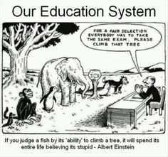 Funny but true. A little humor around standardized testing in education :) Education System, Teacher Humor, Teacher Quotes, Teacher Comics, Teacher Resources, Education Quotes, Albert Einstein Quotes Education, Learning Quotes, Decir No