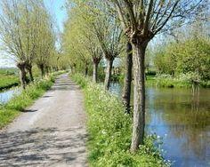 Fietsroute Kinderdijk en omgeving Country Life, Country Roads, Landscape Photos, Nature Photos, Netherlands, Dutch, Camping, Biking, Travel