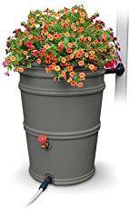 Rain Barrel Guide: How to use rain barrels to harvest rainwater at home – How to use rain barrels for rain water harvesting