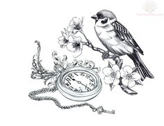 Awesome Sitting Bird And Clock Tattoo Design