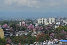IBAGUE COLOMBIA