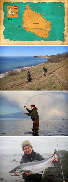 20+ Fishing Ideen in 2020 | angeln, angeltricks, angeltipps