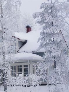 This looks like Mom's northern colonial from the back looking towards the sun porch.