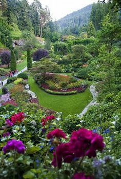 butchart garden, victoria, sunken garden, flower point