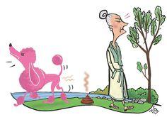 Het privémeer in Amerika. Zwemmen in Amerika is nog helemaal niet zo eenvoudig ondervond mevrouw Villager. Maar áls je dat doet en je stort ter plekke dood neer, of je struikelt over een schildpad of wordt anderzijds door onheil getroffen, weet dan dat het allemaal je eigen schuld is. ©Illustratie Flos Vingerhoets www.nomadandvillager.com