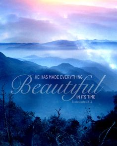 Everything under heaven has a time, a proper season to bloom. We must be patient. Not every season will be beautiful, but they're all necessary and important when used by Him. (Ecclesiastes 3:11)