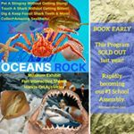 Ocean Rocks, School Programs, Dinosaurs, Video Game, Baseball Cards, Artwork, Work Of Art, Auguste Rodin Artwork, Video Games