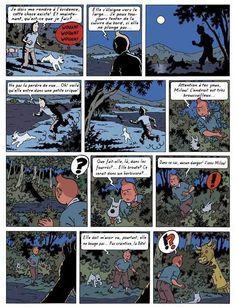 Planche 6 du Lac de la Sorcière, par Rodier. copyright Moulinsart car le personnage appartient à Hergé.