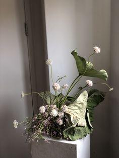 Flower Centerpieces, Flower Decorations, Deco Floral, Floral Design, Floral Wedding, Wedding Flowers, Vertical Garden Plants, Corporate Flowers, Flower Installation