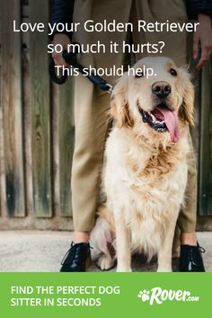 Your dog's totally unique, and that's awesome. It's easier than you think to find a pet sitter or dog walker who will go above and beyond for your dog. Sign up now for $20 toward your first booking!