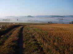 polní cesta - ráno