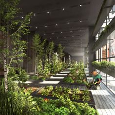 // New York City Vertical Farm by Natural Light Design Studio