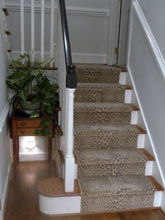 Linus By Stanton Entryway Stairs, Basement Stairs, Entry Hallway, Stairway  Carpet, Carpet