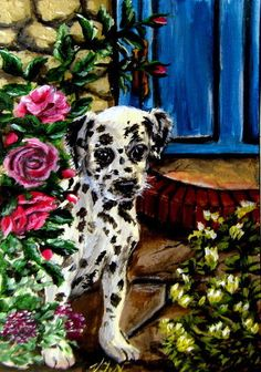 #aceo #animals #art #pic #dalmatian #dog #puppy  #2millionartists #amazing #smile #old #fashion #style #flowers #hair #awesome #nice #eyes #loveit #colorful #beauty #sweat #face #green #new