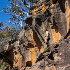 Hike through the Australian wilderness from the comfort of your home. Interact with me as we explore and learn about our diverse rangr of plants and animals. Travel Planner, Sydney Australia, Tour Guide, Wilderness, Mount Rushmore, Waterfall, This Is Us, Wildlife, Hiking