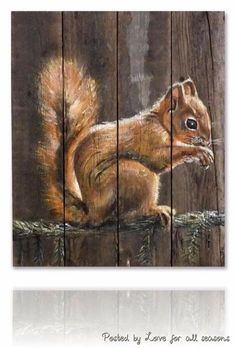 Squirrel on Reclaimed Wood eekhoorn schilderen Pallet Painting, Pallet Art, Tole Painting, Painting & Drawing, Fence Art, Wildlife Art, Pictures To Paint, Animal Paintings, Painting Inspiration