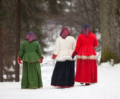 Norwegian Folk costume