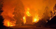 Portekiz'de yangın: 39 ölü