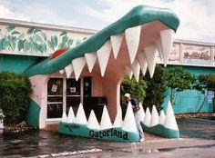 Gatorland, Orlando, FL #favorites