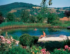 Homemade Swimming Ponds | Natural Swimming Pools