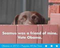 Seamus was a friend of mine. Vote Obama.