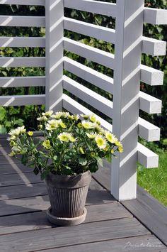 Wood Deck Railing, Balcony Railing Design, Fence Design, Garden Design, Outdoor Pergola, Outdoor Rooms, Outdoor Gardens, Backyard Plan, Backyard Patio Designs