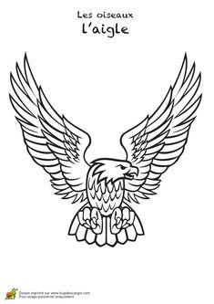 Dessin d'un bel aigle à colorier