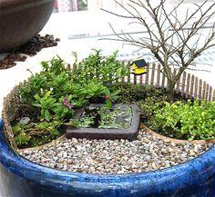 mini garden with itty bitty bird house! I want it!