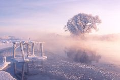 The Dramatic Frozen Countryside of Belarus Photographed by Alex Ugalnikov / Foggy winter sunrise