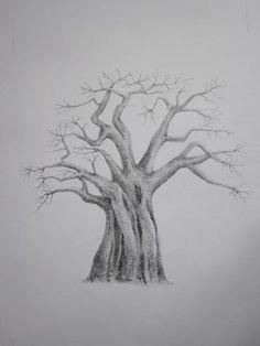 baobab tree - Google Search