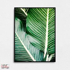 Botanical Print Palm Leaves Nature Modern Tropical Living