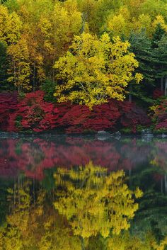 autumn, Saku, Nagano, Japan