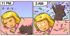 15+ Comics That Purrfectly Capture Life With Cats | Bored Panda